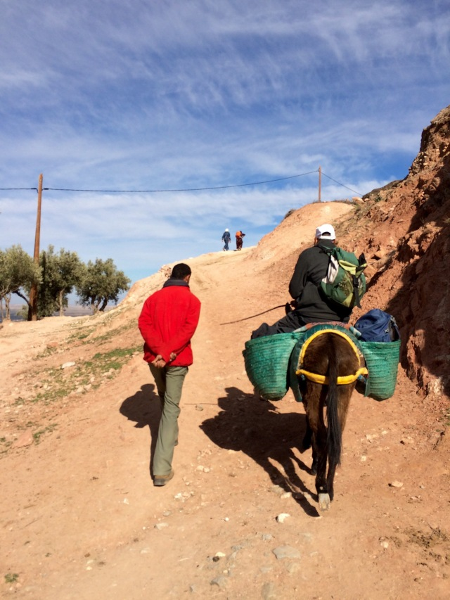 Hike with donkey, Atlas Mountains, Morocco
