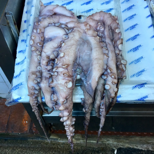 Octopus or pulpo
